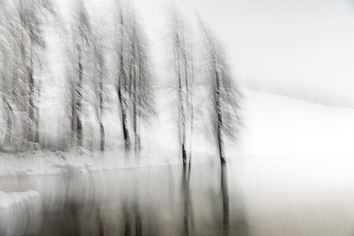 Luca Artioli – water